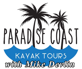 Paradise Coast Kayak Tours Naples Florida